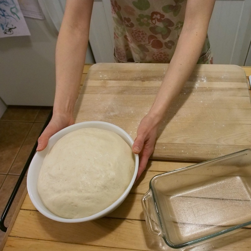 Dough After the 1st Rise