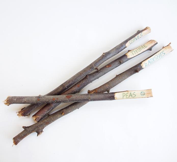 {DIY} Twig Plant Markers