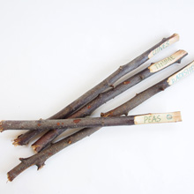 {DIY} Twig Garden Markers ~ Anthropologie Knock-Off