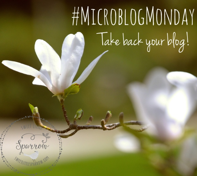 Microblog Monday - Take back your blog! #microblogmonday