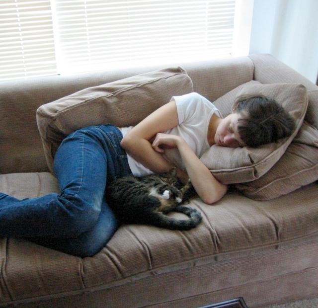 Cat Nap || Sweet Little Sparrow